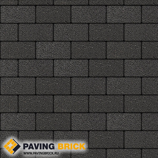 Тротуарная плитка ВЫБОР Ла Линия А.2.П.4 Стандарт гладкий 200х100х40мм цвет Черный - фото 1