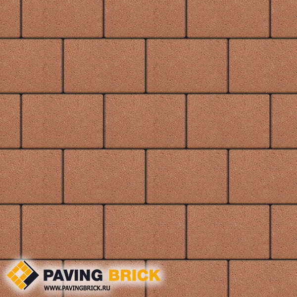 Тротуарная плитка ВЫБОР Ла Линия Б.1.П.8 Гранит 300х200х80мм цвет Оранжевый - фото 1