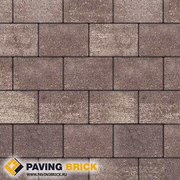 Тротуарная плитка ВЫБОР Ла Линия Б.1.П.8 Искусственный камень 300х200х80мм цвет Плитняк - фото 1