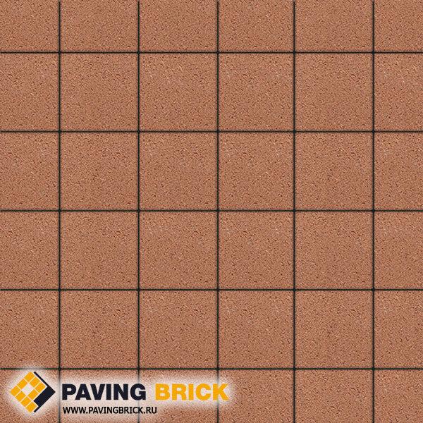 Тротуарная плитка ВЫБОР Ла Линия Б.2.К.6 Стандарт гладкий 200х200х60мм цвет Оранжевый - фото 1