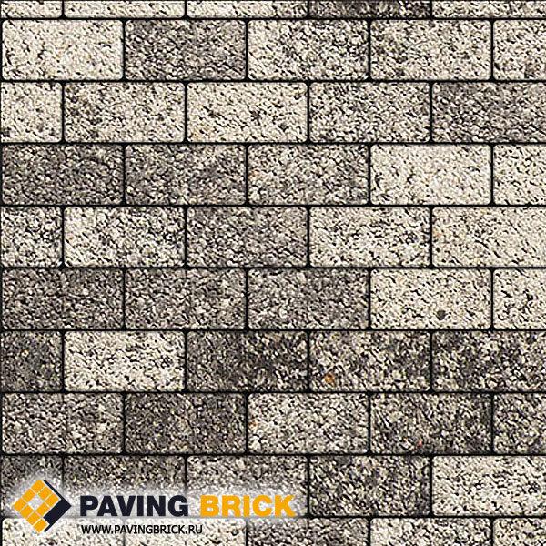 Тротуарная плитка ВЫБОР Ла Линия Б.2.П.6 Листопад гладкий 200х100х60мм цвет Антрацит - фото 1
