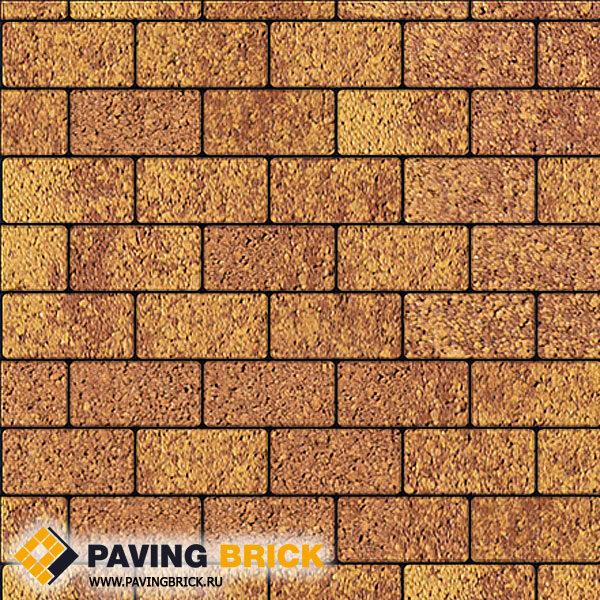 Тротуарная плитка ВЫБОР Ла Линия Б.2.П.6 Листопад гранит 200х100х60мм цвет Каир - фото 1