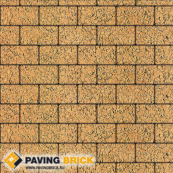 Тротуарная плитка ВЫБОР Ла Линия Б.2.П.6 Листопад гранит 200х100х60мм цвет Сахара - фото 1